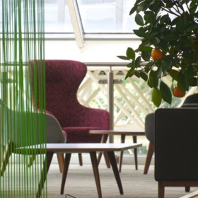 Bringing the outside in, biophilic design