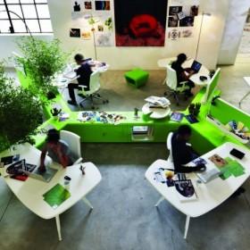 Green college interior